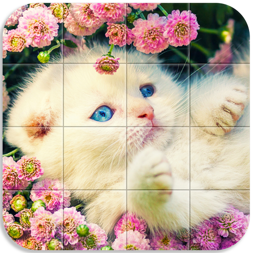 Tile Puzzle Cats file APK for Gaming PC/PS3/PS4 Smart TV