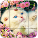 Tile Puzzle Cats file APK Free for PC, smart TV Download