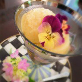 10 Fitch Tropical Breakfast Sorbet