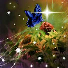 Magical Butterfly. by Valerie Stein - Digital Art Animals