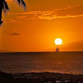 Sunset Napili Bay, Maui, Hawaii by Doug Wean - Landscapes Sunsets & Sunrises ( sky, sailboat, hawaii, tree, clouds and sea, clouds, sun, seascape, sunlight, ocean, ocean view, sunset, maui, landscape,  )