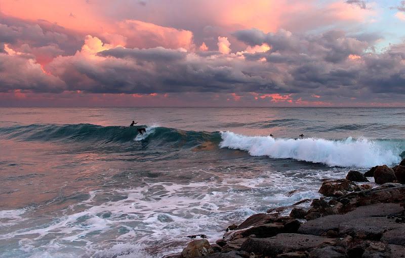 I surfisti. di Naldina Fornasari