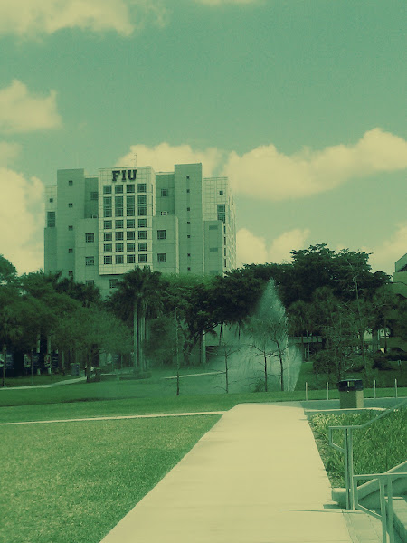 Photo: Green Library