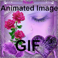 Animated Images Gif icon