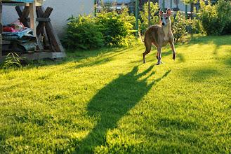 Photo: Catwalk