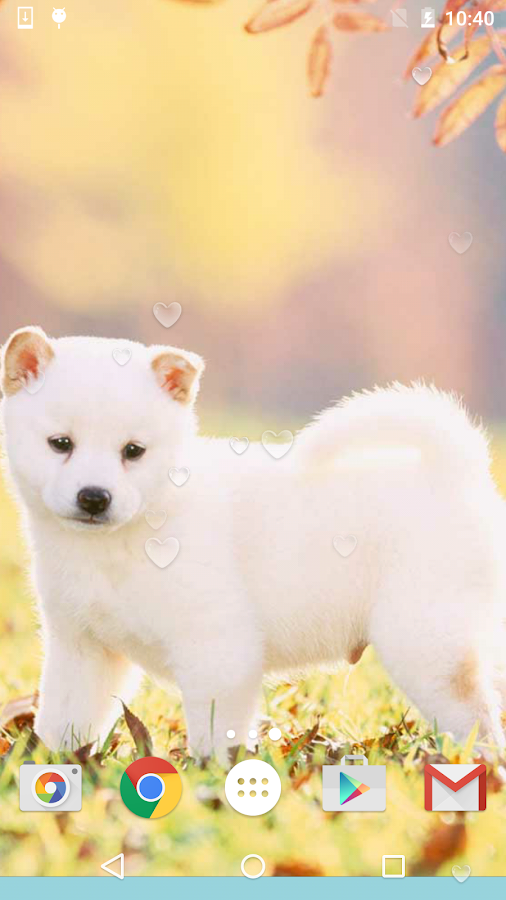 Cute Puppies Live Wallpaper - Android Apps on Google Play