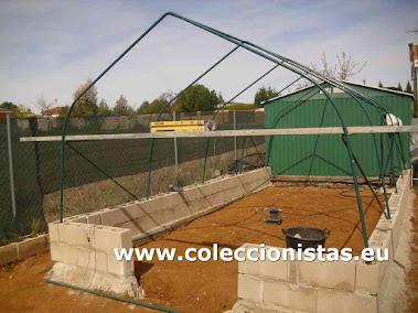 Coleccionistas.eu - Estructura del invernadero