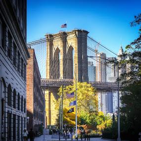 Brooklyn Bridge  by Aurelio Firmo - City,  Street & Park  Historic Districts ( brooklyn, bridge, brooklyn bridge, new york )