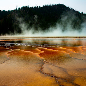 Yellowstone National Park 5 by Chuck Vinson - Landscapes Waterscapes ( rivers, usa, bacteria, nature, springs, streams, wyoming, water, yellowstone, parks, beautiful, geysers, steam, travel, hot-springs, photography, landscape, colorful,  )