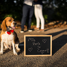 Wedding photographer Eric Blasco Reig (ericblasco). Photo of 14.04.2016