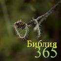 365 Библия icon