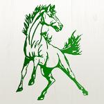 Ennis Mustangs