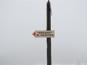"""Photo: 02.Idę zobaczyć """"Organy"""" Władysława Hasiora."""