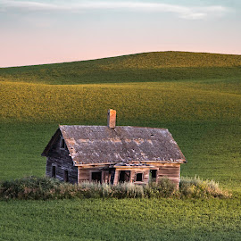 LITTLE HOUSE ON THE PRAIRIE  by Dana Johnson - Buildings & Architecture Other Exteriors ( homestead, fields, landscape, praire, morning )