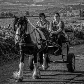 Horse and cart by Andrew Lancaster - Transportation Other ( country, wheels, natural, countryside, black, transport, people, cart, reins, horse, mono, white, road, hedges, vehical,  )