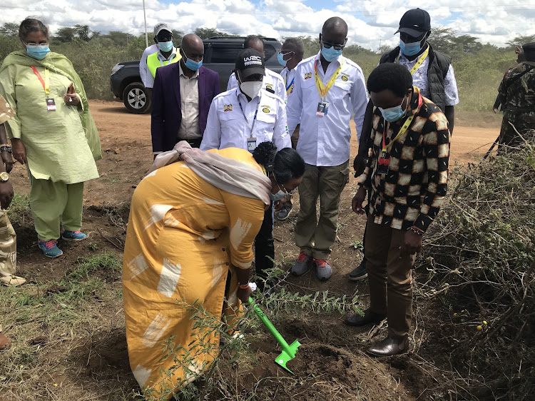 Sports CS Amina Mohamed plants a tree as part of the WRC Safari Rally Green Legacy Project.