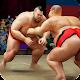 Sumo Stars Wrestling 2018: World Sumotori Fighting (game)
