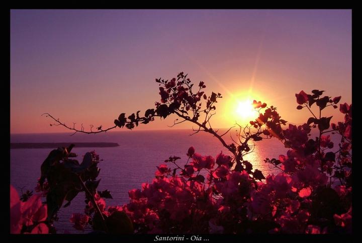 Oia... dove il mare abbraccia il sole di AMETISTA