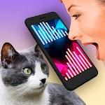Cat Translator Simulator 1.3.2
