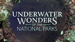 Underwater Wonders of the National Parks thumbnail