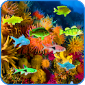 Under Water Fishes LWP icon