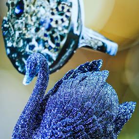 SWAROVSKI by Rene Timbang - Artistic Objects Other Objects ( #swarovski #decoration #stilllife #mycapture #canonphotography )
