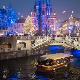 Winter light.  by Irvan Junizar - City,  Street & Park  Night ( light, night, winter, cityscape, holiday, cheer )