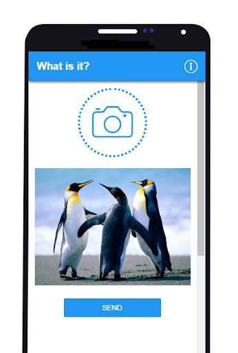 What is it? 0.0.5 screenshots 1
