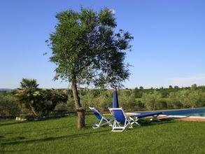 Photo: Il nostro GiardinoGirasole saturnia agriturismo