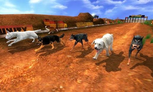 Real Dog Racing Games - náhled