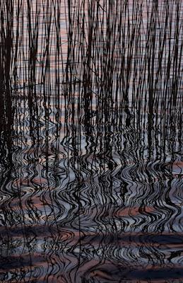 Lago di Annone - colori e riflessi di Boboparra