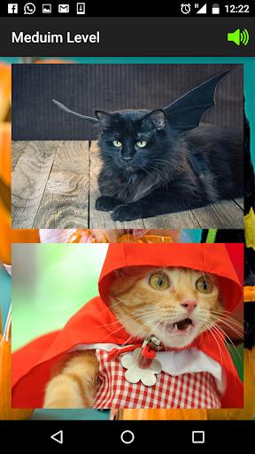 Tile Puzzle _ Cat Halloween