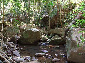 Photo: We passed by small creeks and waterfalls in the first few hours, then no more natural water in higher elevations