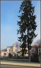 Photo: Confier din Turda - Piata Republicii - 2018.11.12