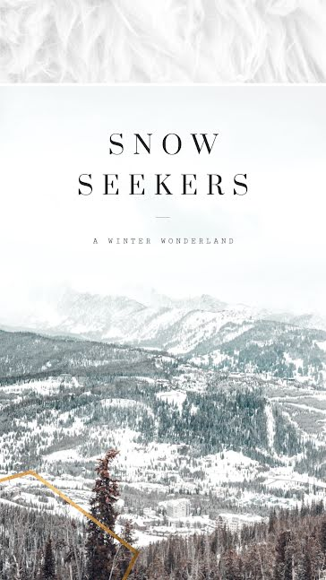Snow Seekers - Facebook Story Template