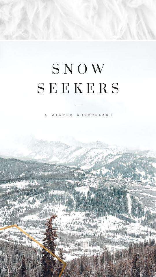 Snow Seekers - Facebook Story Template
