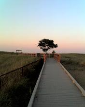 Photo: This way to the Plum Island beach