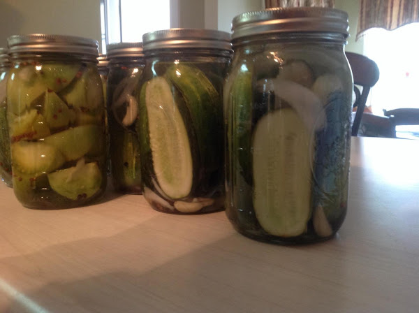Garlic Dill Pickles And Pickled Green Tomatoes Recipe