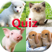 Pics Animals Quiz