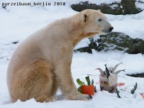 Photo: Erst einmal hinsetzen und alles begutachten :-)