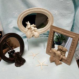 animal_mirrors