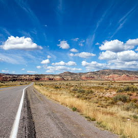 New Mexico by Alessandro Calzolaro - Landscapes Travel ( road, landscape, usa, new mexico,  )