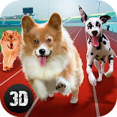 Dog Racing Tournament 3D