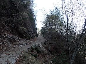 林道を東へ