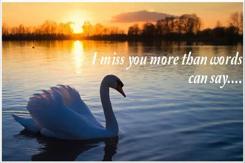 Download i miss you greeting card apk latest version app for android i miss you greeting card poster m4hsunfo