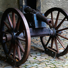Cannon by Darko Kordic - Artistic Objects Still Life