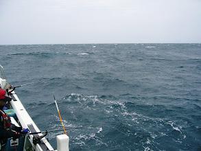 """Photo: あさ3~4投で数匹ずつゲット!そのあと、最近の18番""""アンカー潮""""で釣り出来ず! 急に波、風ともに強まり昼過ぎまで粘りましたが・・・。 撃沈。 撤収。"""
