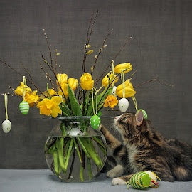 by Jane Bjerkli - Public Holidays Easter