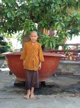 Photo: Tang Minh Tinh - Male - DOB 10/29/2004