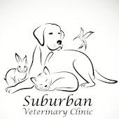 Suburban Veterinary Clinic